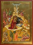 Nativity of Jesus 3